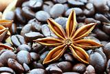 Anise Star and Coffee Beans
