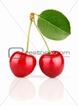 fresh cherry fruits with green leaves