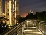scenic view of lighted walkway
