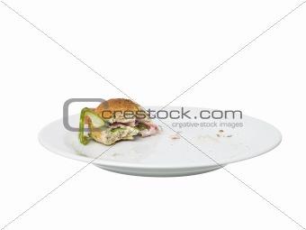 Almoste eaten Sandwich
