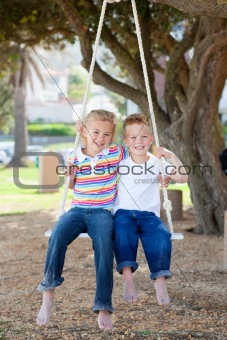 Adorable siblings swinging