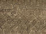 abstract ground texture