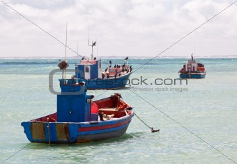 Colourful traditional fishing boats in harbour