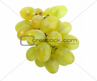 Single bunch of white grape