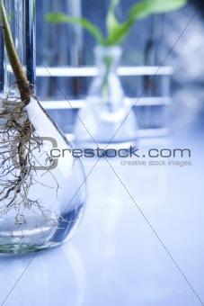 Eco laboratory