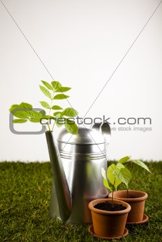 Watering Can and Gardening Gloves