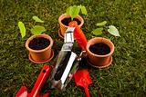 Plant and garden tools