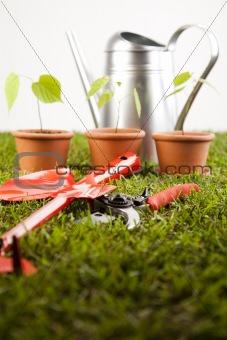 Assorted gardening