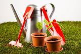 Gardening theme, garden