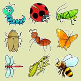 9 insect icon