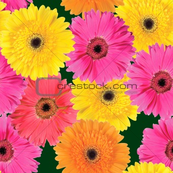 Background of pink, yellow and orange flowers