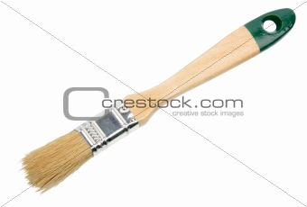 Single brush with green wood handle