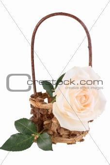 One light-pink rose in basket