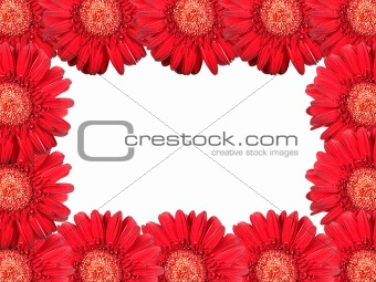 Abstract frame with red flowers