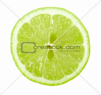 Single cross section of lime