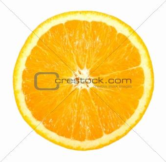 Single cross section of orange