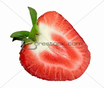 Single cross of red strawberry