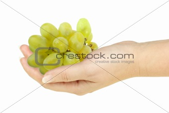 Green grape in a hand of woman