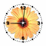 Single orange flower as a office clock