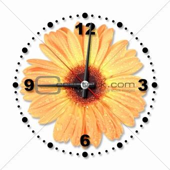Single orange flower as a office clock