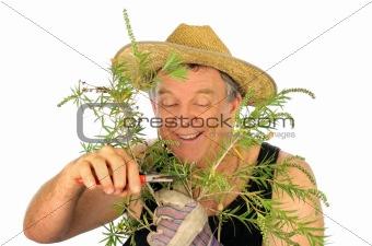 Pruning Gardener