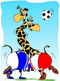giraffe Football