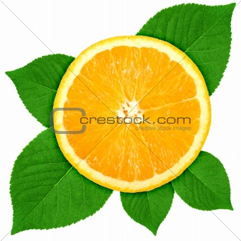 Single cross section of orange with green leaf