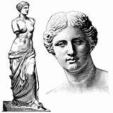 Vector Aphrodite Statue