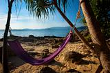 Hammock On Secluded Jungle Beach