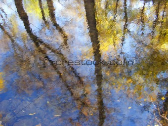 Autumn reflections in the water