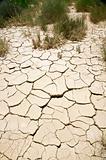 broken soil