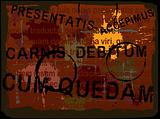 Latin Text Grunge Background 5