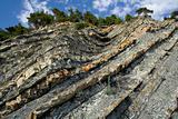 littoral rock