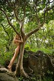 Nude woman in nature.