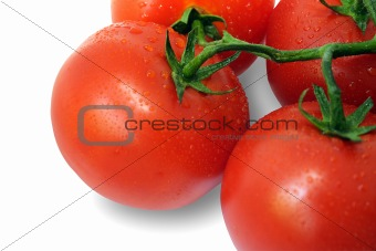 Tomato and drops of water (with Clipping Path)