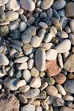 sea stones