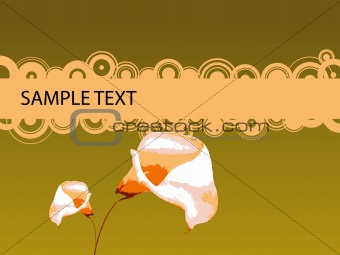 2 Lilies with Copy Space