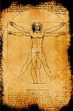 Photo of the Vitruvian Man