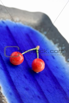 Pair of cherries on a plate