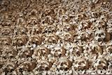 Wall of human bones and skulls. Chapel Capela de Ossos in Faro, Portugal