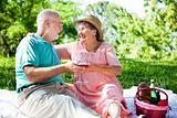 Romantic Seniors on a Picnic