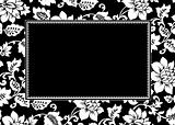 Vector Floral Pattern and Frame