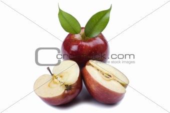Cutting apple close up