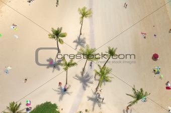 aerial dreaming