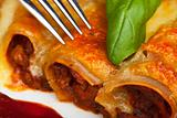traditional cannelloni pasta dish with tomato sauce