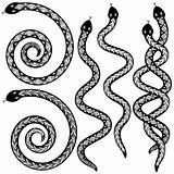 Snake designs