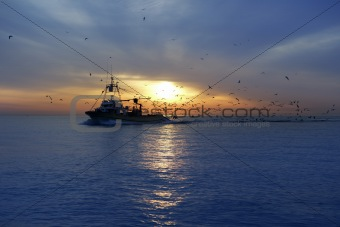 professional fishing boat seagull on sunset sunrise