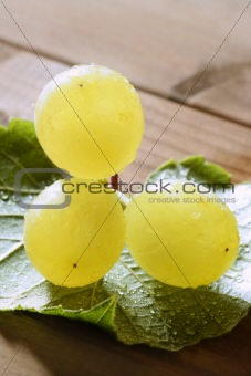 Beautiful green yellow grapefruit macro