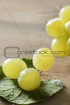 Beautiful green yellow grapefruit macro
