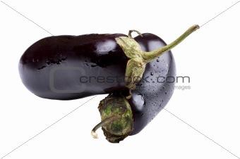 aubergine on white background